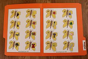 Butterfly Blends Folder Game