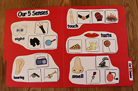 Our 5 Senses Folder Game